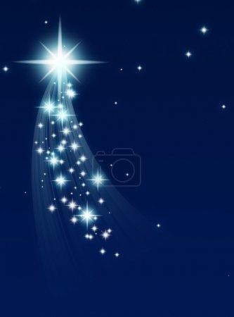 Foto de Estrella trepadora, sobre un oscuro fondo estrellado - Imagen libre de derechos