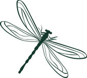 Abstract dragonfly vector illustration