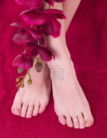 Photo pour Pieds féminins sains et élégants avec l'orchidée sur fond blanc - image libre de droit