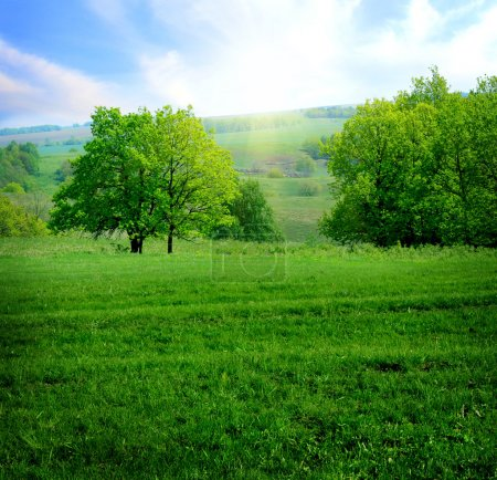 Photo for Rural landscape with lush green field - Royalty Free Image