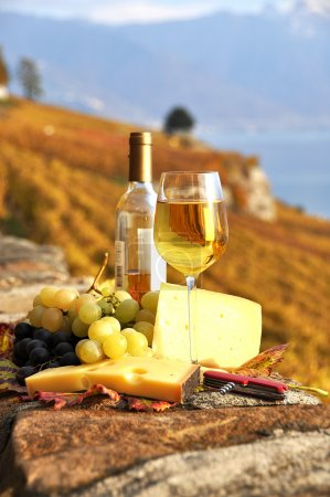 Wine, grapes and chesse on the terrace vineyard in Lavaux region