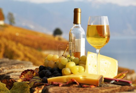 Wine, grapes and cheese against vineyards in Lavaux region, Swit
