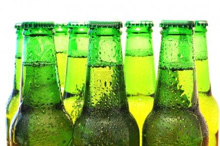 Photo pour Rangée de bouteilles de bière - image libre de droit