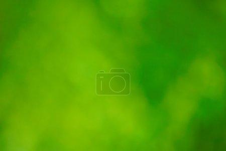 Photo pour Fond vert - image libre de droit