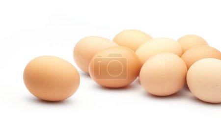 Photo pour Œufs sur fond blanc - image libre de droit