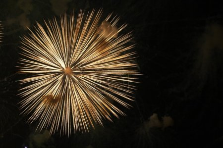 Firework in honor of Independence Day