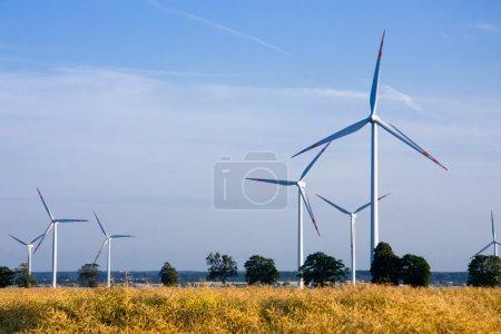 Photo pour Les éoliennes sur le champ de colza - une source d'énergie alternative - image libre de droit
