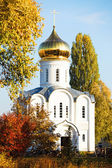 White church surrounded by golden trees
