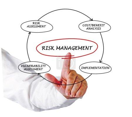 Diagram of risk manager