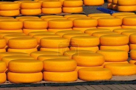 Photo pour Fromage jaune, empilé sur le marché aux fromages d'alkmaar (Pays-Bas). - image libre de droit