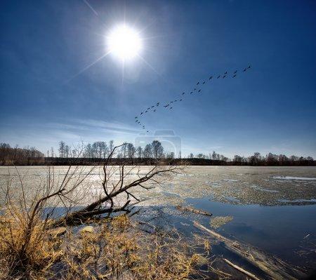 Foto de Spring.Last días para el hielo. - Imagen libre de derechos