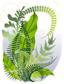 A bouquet of herbs and ferns