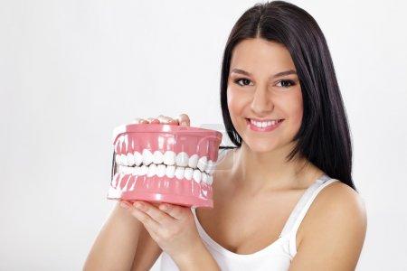 Photo pour Souriante jeune femme tenue en plastique grand modèle des mâchoires avec dents - image libre de droit