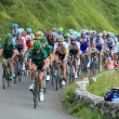 Béost,France,July 15th 2011: Image of the peloton...