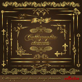 Gold calligraphic design elements vol2 Vector design corners bars swirls frames and borders Hand written retro feather symbols