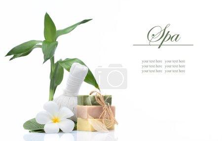 Photo pour Vue des objets de thème de spa sur fond blanc. bannière. beaucoup d'espace de la copie - image libre de droit
