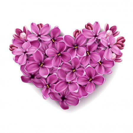 Illustration for Flowers of a lilac in the form of a heart. An illustration on a theme of Valentine's day. - Royalty Free Image