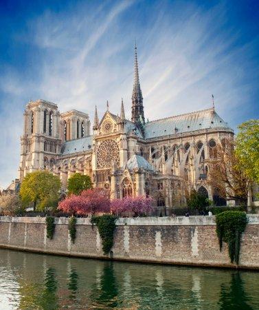 Photo pour Notre-Dame de paris - france - image libre de droit