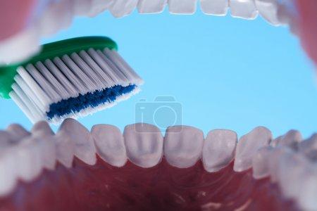 Photo pour Dentaire - image libre de droit