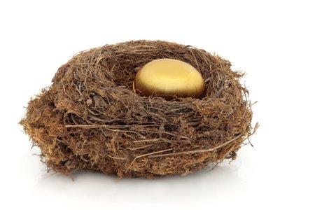 Photo pour Nid d'oiseau avec décoratif oeuf d'or symbolisant la sécurité financière sur fond blanc. - image libre de droit