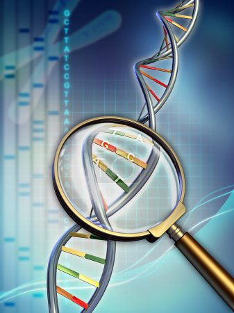 Photo for Dna chain examined under a magnifying glass. Digital illustration. - Royalty Free Image