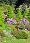 Colorful botanical garden