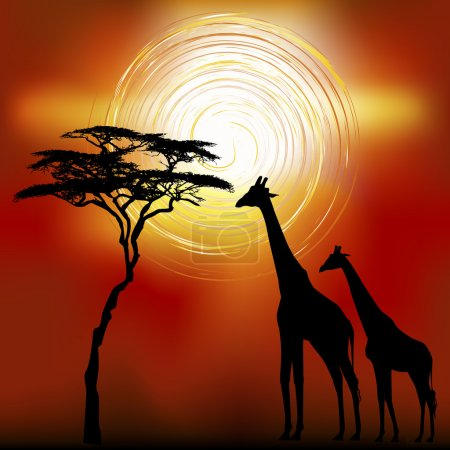 African landscape with giraffes.