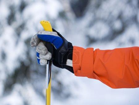 Photo pour Bâton main et ski avec mise au point sélective - image libre de droit