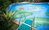Swimming platform