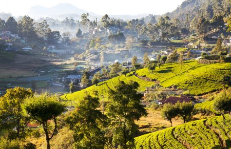 Sri Lanka landscapes