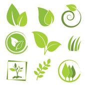 Eco ikona