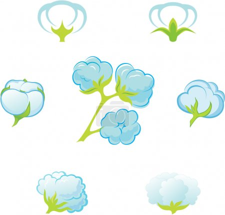 Illustration for Cotton. Element of design for a vector illustration. - Royalty Free Image