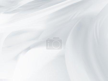 flou fond blanc