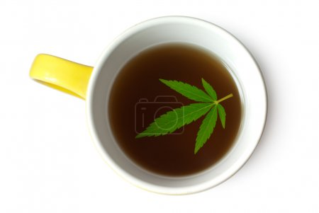 Green Cannabis (Marijuana) leaf in cup of tea isol...