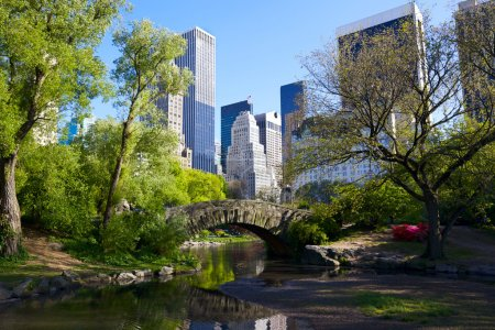 Photo pour Central Park et Manhattan skyline, New York - image libre de droit