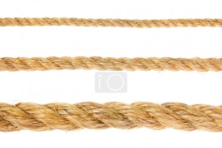 Photo for Different size ropes on white background - Royalty Free Image