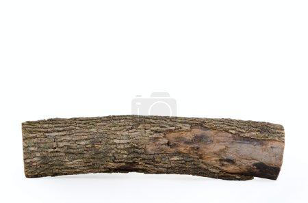 Close-up of wooden log stub isolated on white back...
