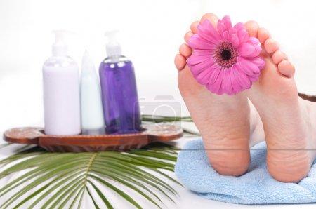 Photo pour Femme aux pieds nus, avec une fleur sur une serviette. concept spa - image libre de droit