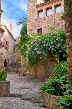 Photo pour Chantier vert de l'été dans la ville médiévale, peratallada, Espagne - image libre de droit