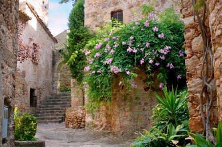 Photo pour Jardin d'été dans le village médiéval de peratallada, Espagne - image libre de droit