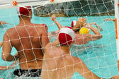 are playing water polo