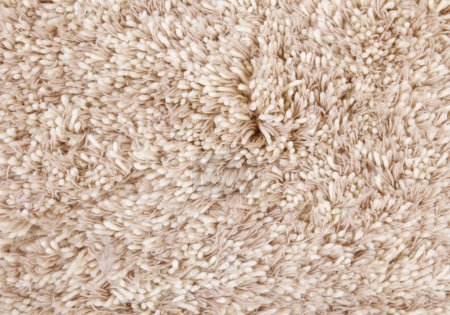 Photo for Beige carpet texture, frontal view close-up woolen fibers - Royalty Free Image