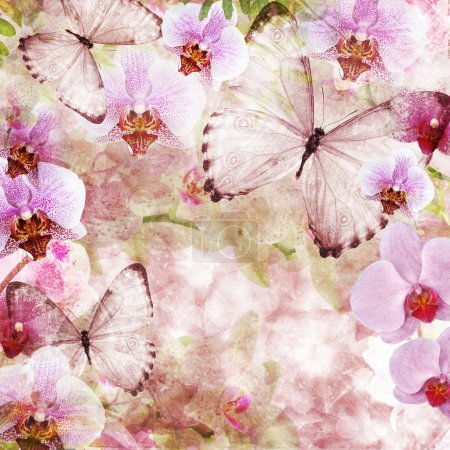 Photo pour Papillons et orchidées fleurs fond rose (1 de l'ensemble ) - image libre de droit