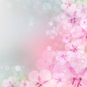 Fresh, pink, soft spring blossoms on pink bokeh background.