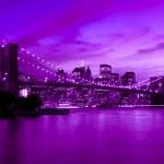 Brooklyn Bridge, New York in purple and blue hue...