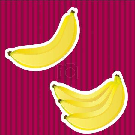 Illustration for Bananas on bottom white border lines in purple, vector illustration - Royalty Free Image