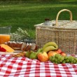 Sumptuous picnic spread out on a red and white che...