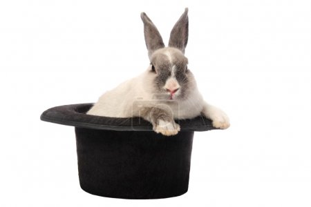 Photo for Cute bunny rabbit climbing out of a black hat - Royalty Free Image