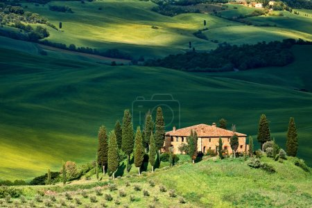 paysage de Toscane - Belvédère