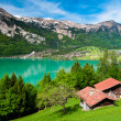 Panorama of lake Brienz with the town Brienz in th...